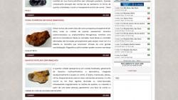 Site Geologia Online